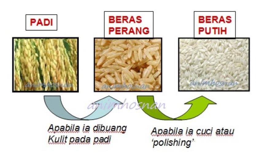 proses hasilkan beras