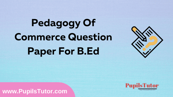Pedagogy Of Commerce Question Paper For B.Ed 1st And 2nd Year And All The 4 Semesters In English, Hindi And Marathi Medium Free Download PDF   Pedagogy Of Commerce Question Paper In English   Pedagogy Of Commerce Question Paper In Hindi   Pedagogy Of Commerce Question Paper In Marathi