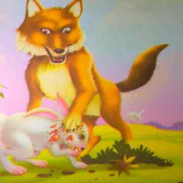 Story Of Animals Fox In Hindi