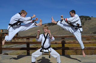 Karate and taekwondo black belts doing martial arts