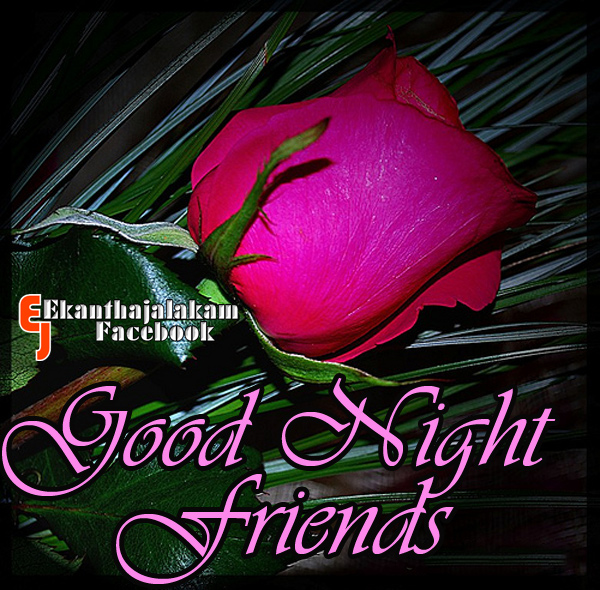 Good Night Image With Love Quotes Malayalam Free Download Daily