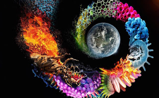 Planificación Multigrado : Incendios del Amazonia