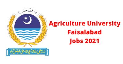 Agriculture University Faisalabad Jobs 2021 - University of Agriculture Faisalabad Jobs 2021 - UAF Jobs Advertisement 2021