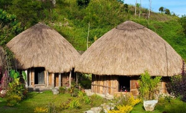 Gambar rumah adat Papua (Rumah honoi)