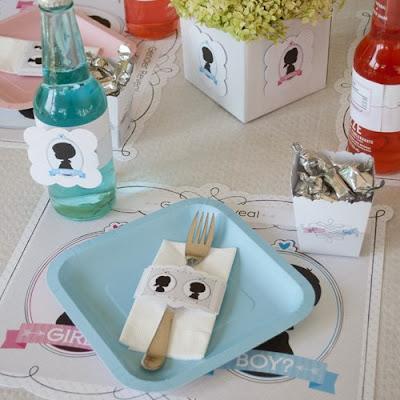 Gender Reveal party tableware supplies