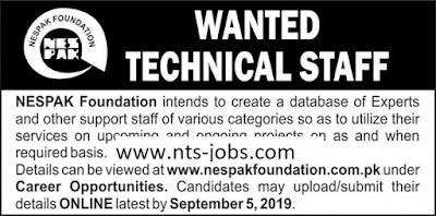 NESPAK Foundation Jobs 2019 for Experts & Support Staff Apply Online Latest