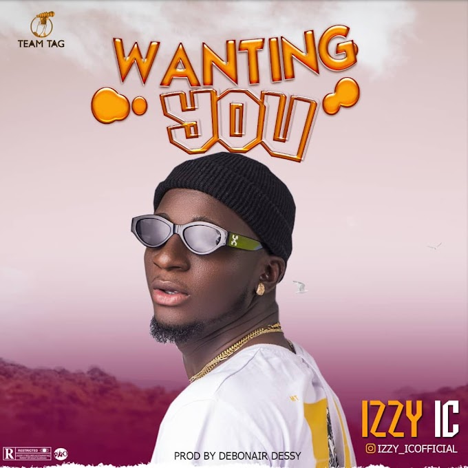 Music: Izzy Ic - Wanting You
