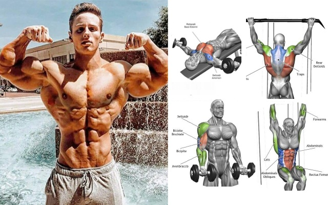 The Pull/Push Workouts Plan For Muscle Gains And Fat Burning