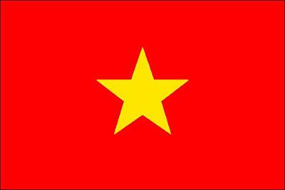 vpn pour les expatriés vietnam
