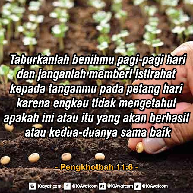 Pengkhotbah 11:6