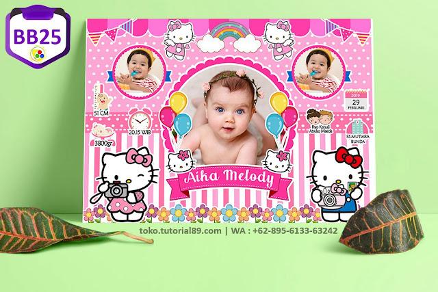 Biodata Bayi Costume Boy Girl Kode BB25 | Hello Kitty