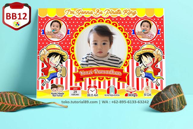 Biodata Bayi Costume Baby Boy Kode BB12 | Lufy