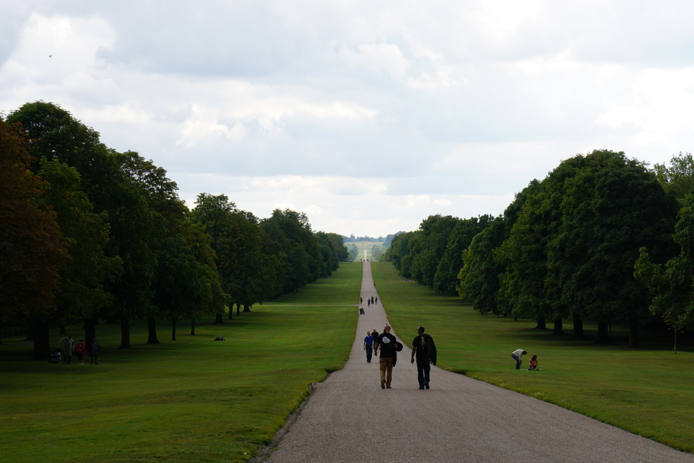 The Long Walk no Windsor Great Park