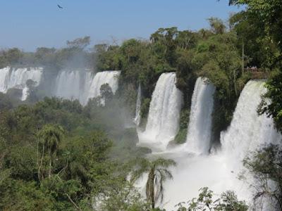 Cataratas del Iguazú con mucha vegetación