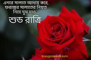 bangla good night pic