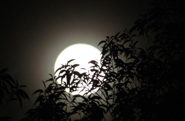 lục bát 2018: Bến trăng