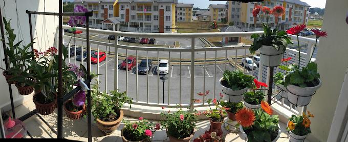 13 Tips Deco Balkoni Rumah dengan Konsep Mini Garden