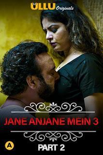 Charm Sukh (Jane Anjane Mein 3) Part 2 Hindi Web Series Download 720p WEB-DL