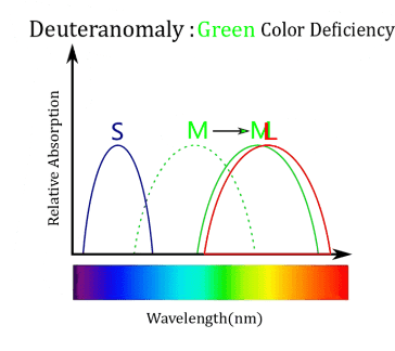 Green Colour Deficiency, Online colour blindness test free