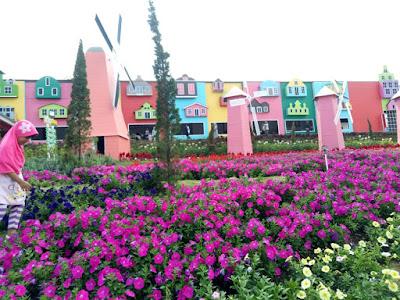Taman bunga celosia, rekomendasi wisata semarang dan sekitarnya