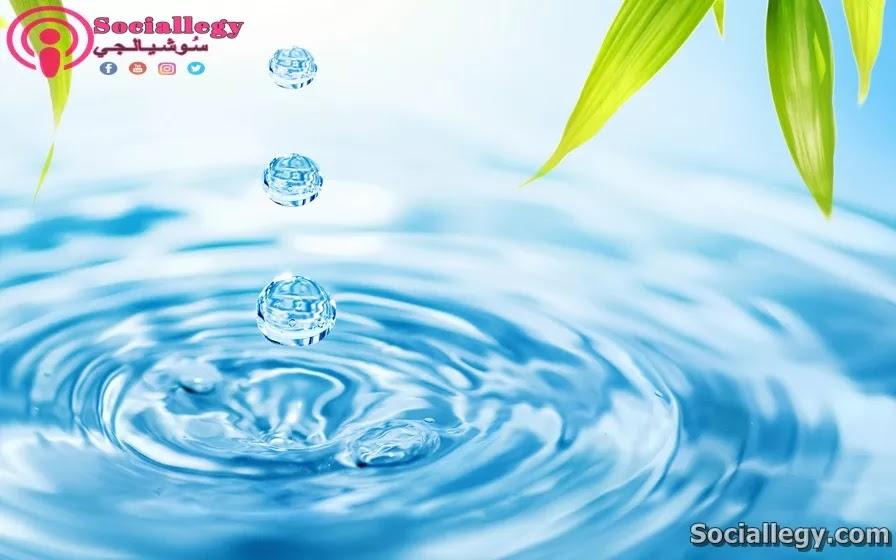 حقائق عن الماء