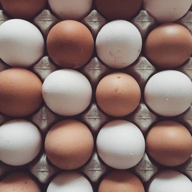 Putih telur untuk  memanjangkan rambut secara alami