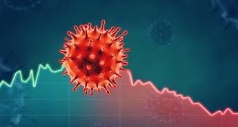 5 Peluang Usaha Selama Pandemi Ini, Cocok Buat Tambah Penghasilan