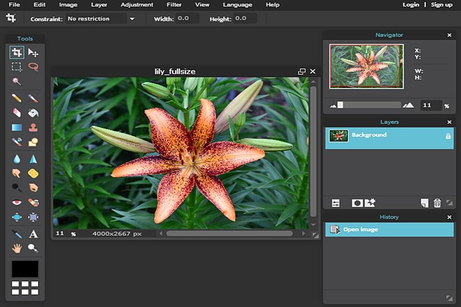 طريقة استخدام برنامج الفوتوشوب اونلاين Photoshop Online بدون تحميل