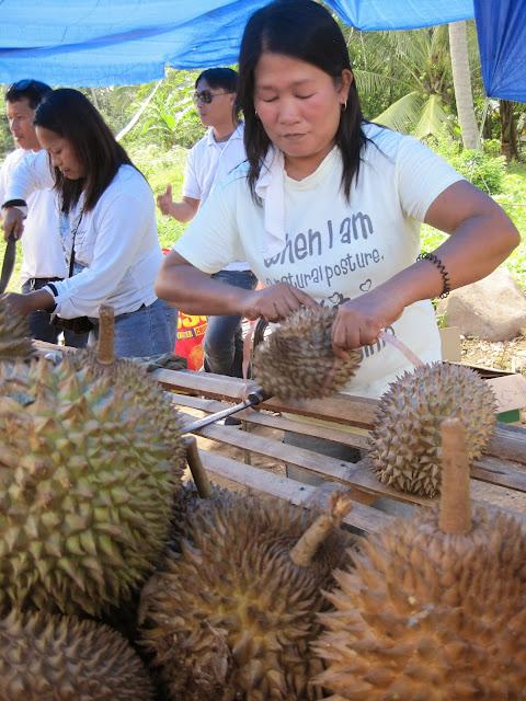 フィリピン、ダバオのスタンドで販売されているドリアン(Durian)