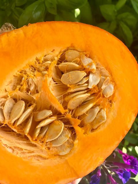 Passionately Raw! - Hokkaido Pumpkin