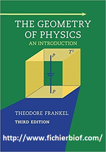 The  Geometry of physics An introduction