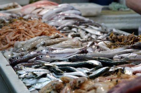 Mesa con pescado en exposición. Diferentes tipos de pescado