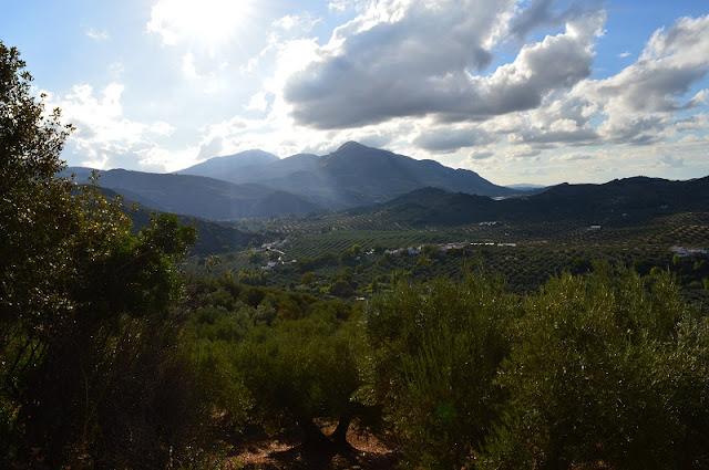 Sierra Sur de Jaen, olive groves, Spain