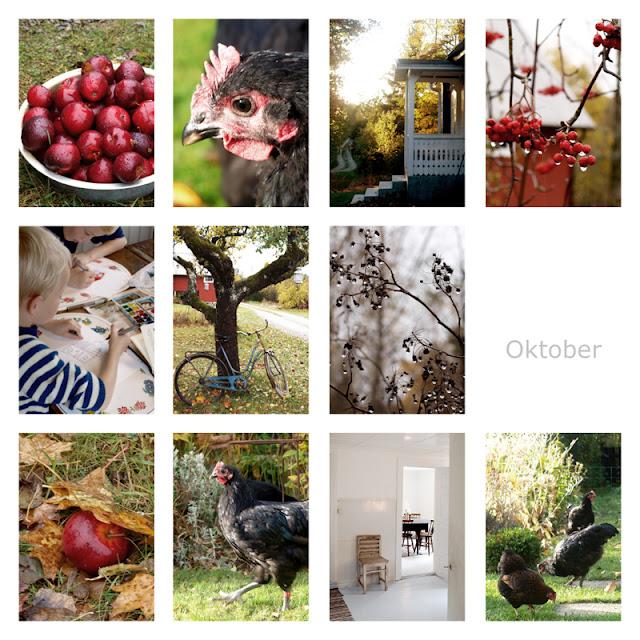 Haveåret 2016 - oktober