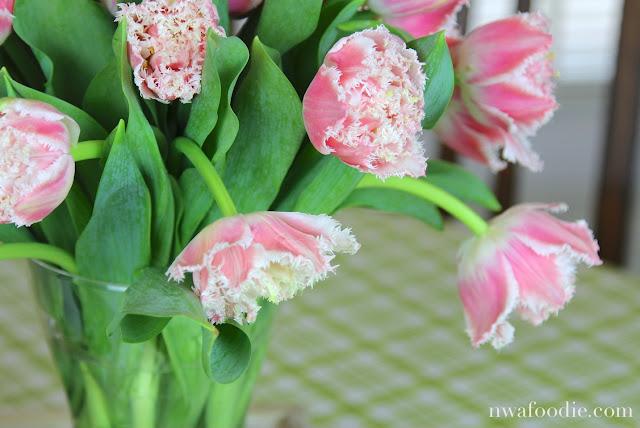 Stargazer Barn Queensland tulips - (c)nwafoodie