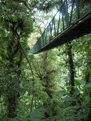 Puente colgante selva, walk ways, Monteverde, Costa Rica, vuelta al mundo, round the world, La vuelta al mundo de Asun y Ricardo, mundoporlibre.com