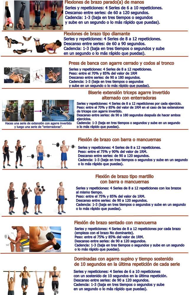 Resumen de la rutina de ejercicios para brazos grandes y fuertes