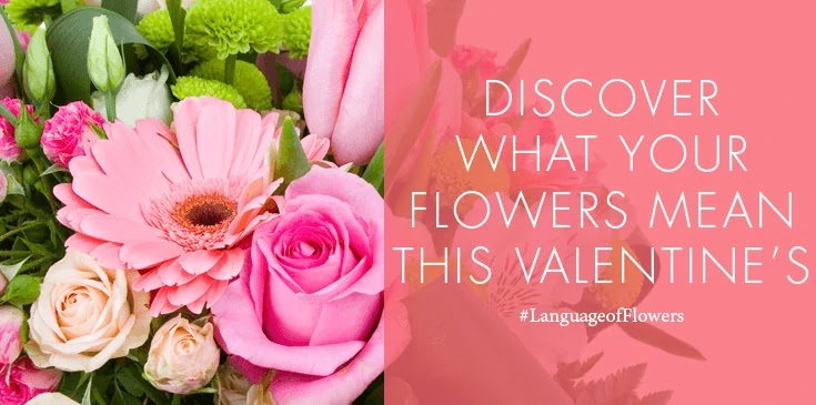 Which Valentine's Day Bouquet Are You?