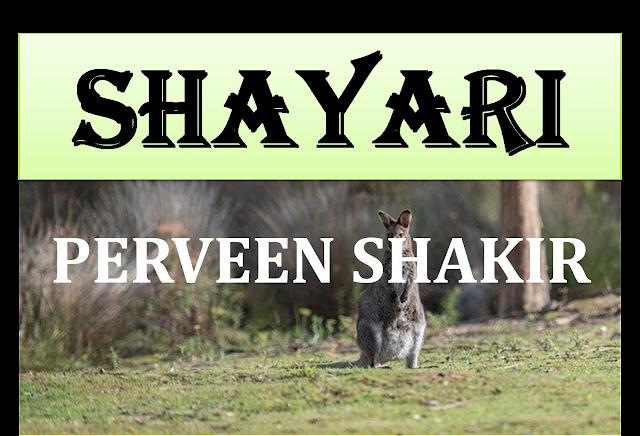 Perveen Shakir Hindi Shayari, Hindi Shayari Perveen Shakir, Hindi Shayari, Shayari in Hindi, Hindi me Shayari