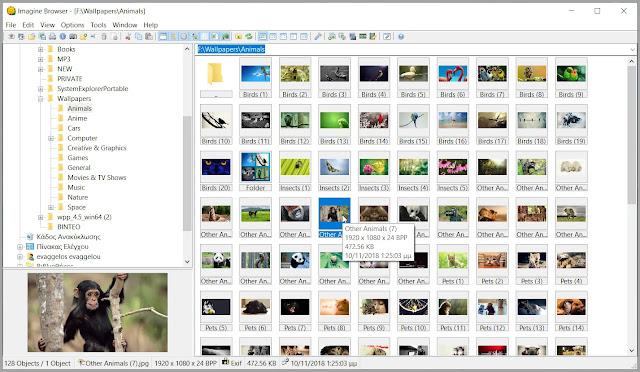 Imagine :  Εφαρμογή προβολής εικόνων με υποστήριξη εικόνων από ψηφιακή κάμερα