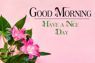 Good Morning Royal Images Download for Whatsapp Facebook1
