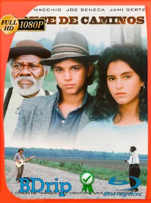 Encrucijada (1986) HD BDRIP [1080p] Latino [GoogleDrive] [MasterAnime]