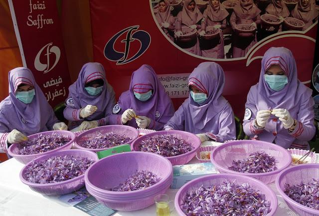 Жінки перебирають шафран під час щорічного фестивалю квітів із шафрану