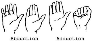 ROM jari-jari tangan dengan gambar
