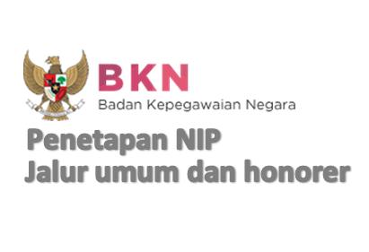 Update Penetapan NIP CPNS 2014-2015 Formasi Umum dan Honorer