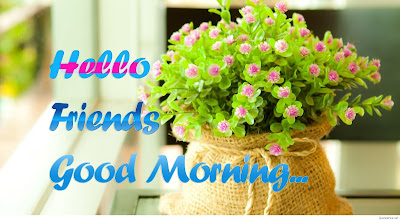 Good Morning wishing Beautiful flowers hd wallpaper images