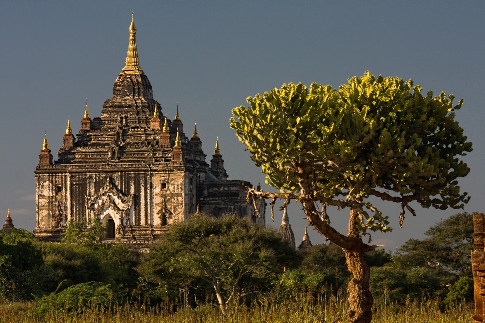 Gawdawpalin Temple,pagoda,birma,bagan