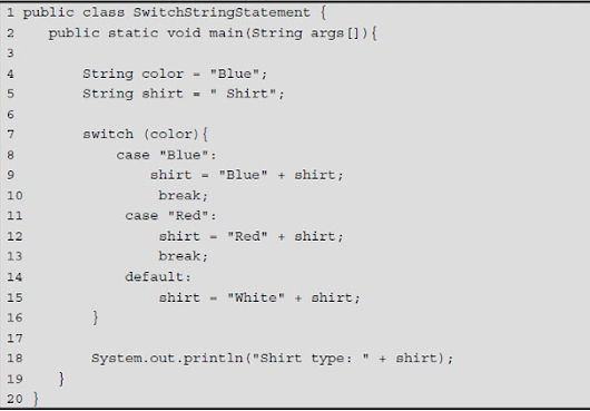 Java Logical Operators( for loop , while loop and switch statement) - Coding