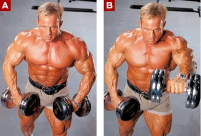 تمارين تضخيم عضلات الاكتاف