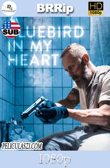 A Bluebird in My Heart (2021) HD BRRip 1080p SUBTITULADA